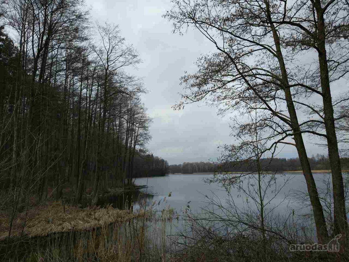 Druskininkų sav., Vilkanastrų k., žemės ūkio, miškų ūkio paskirties sklypas