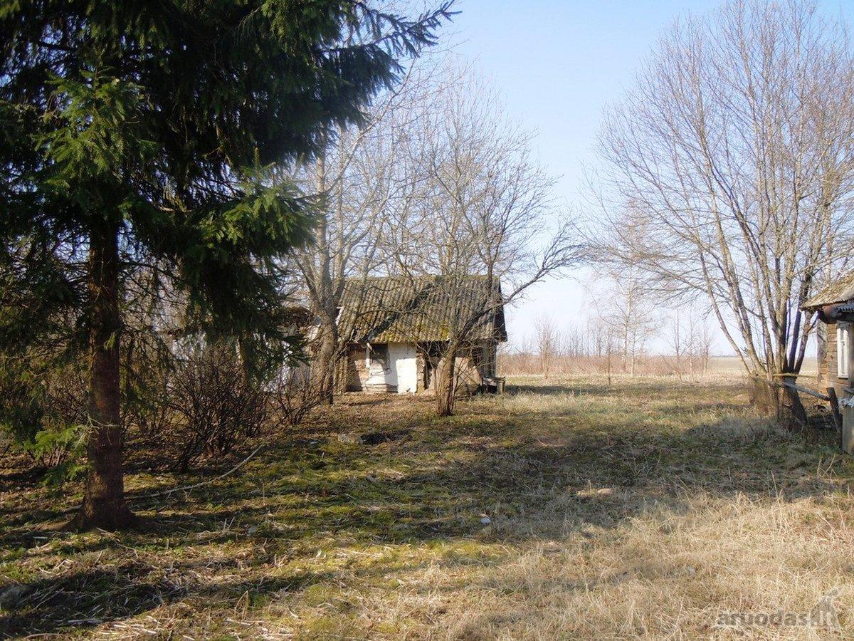 Anykščių r. sav., Mariniškių k., medinė sodyba
