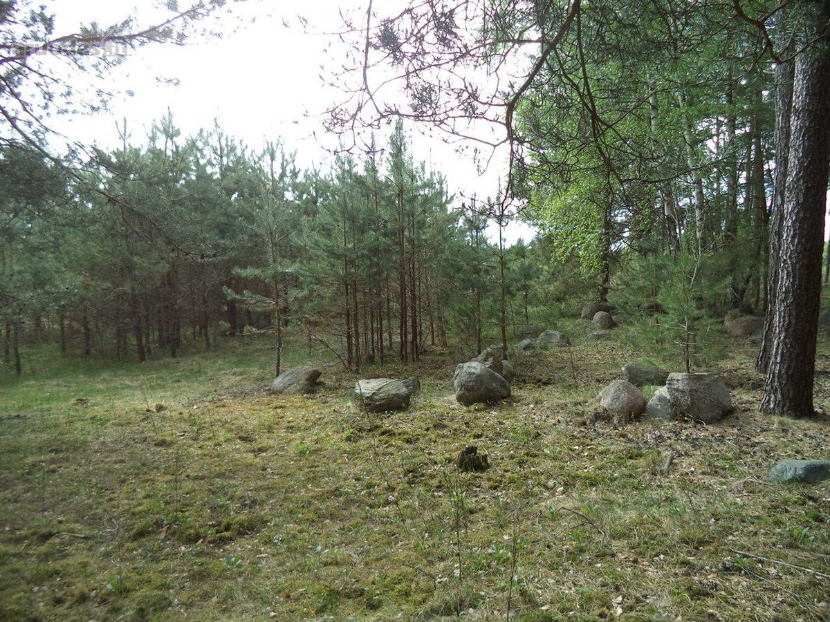 Vilniaus r. sav., Gailiūniškių k., žemės ūkio paskirties sklypas