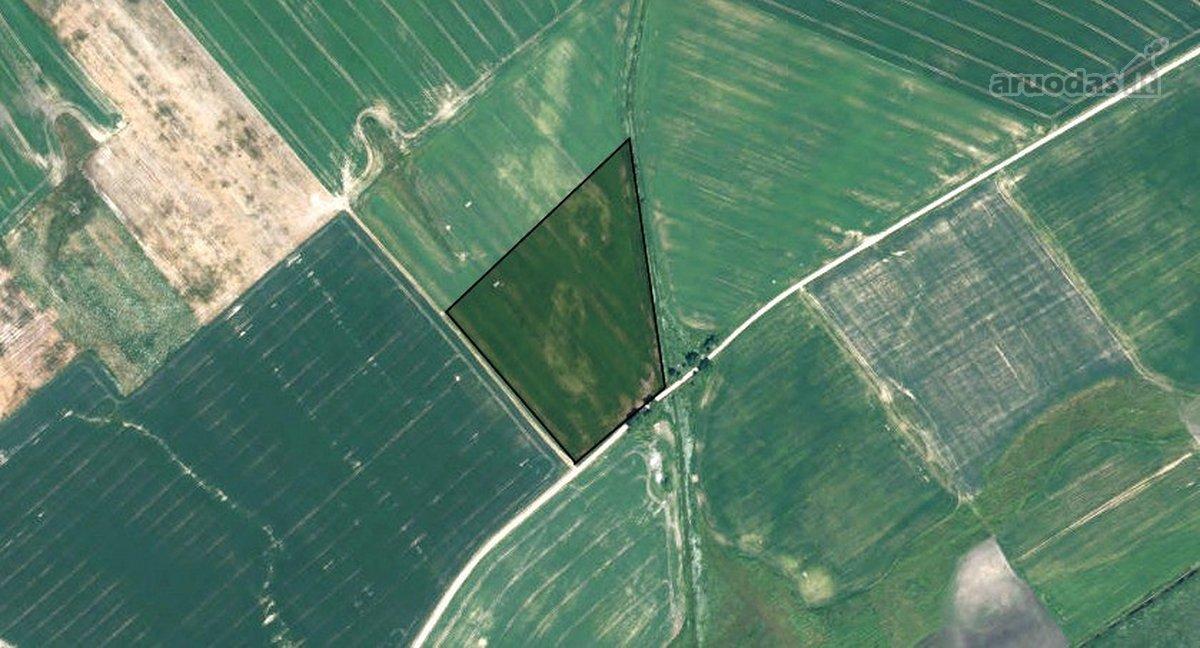 Radviliškio r. sav., Žemųjų Levikainių k., žemės ūkio paskirties sklypas