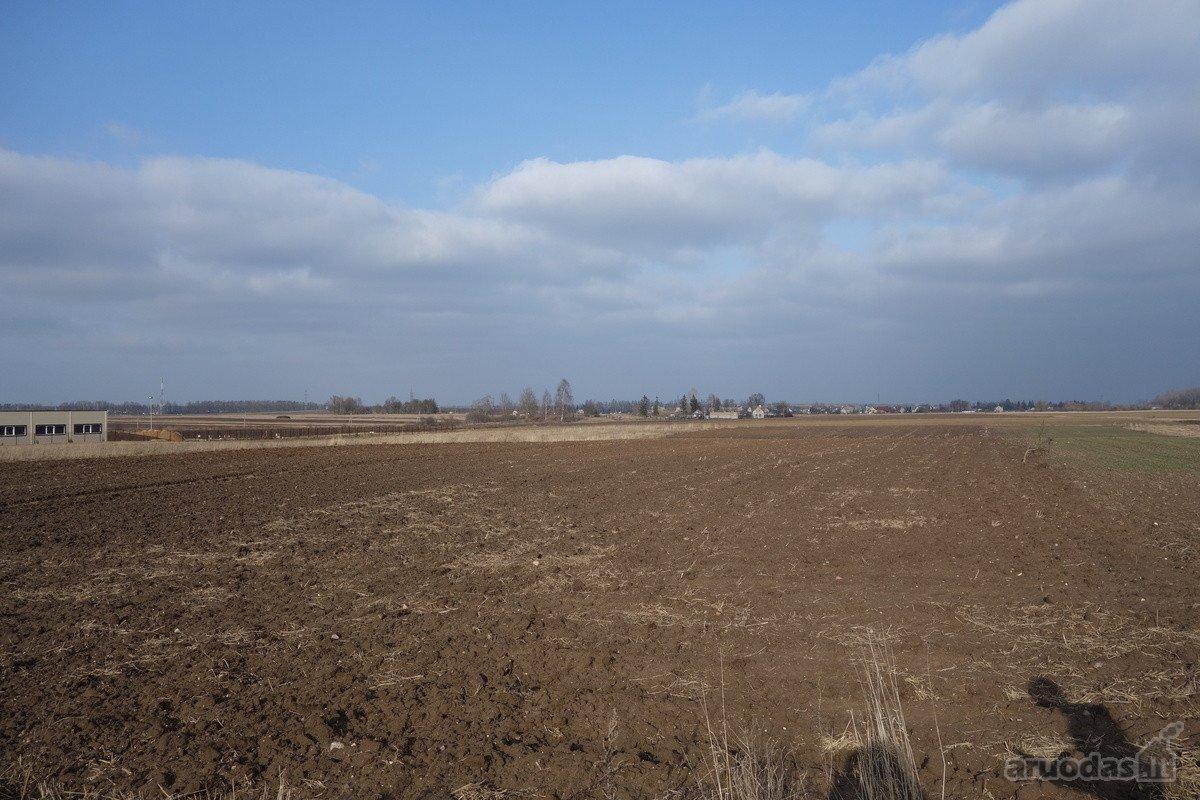 Šiaulių r. sav., Voveriškių k., žemės ūkio paskirties sklypas