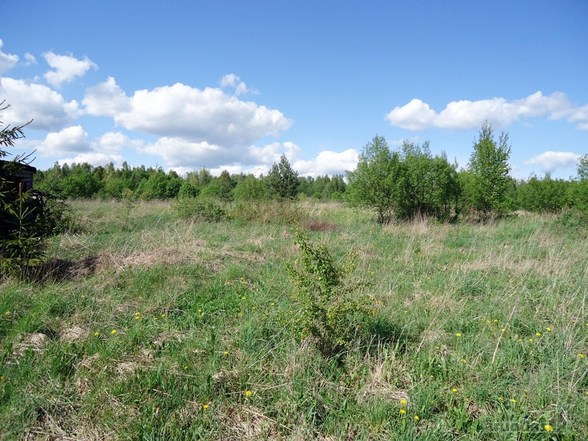 Vilniaus r. sav., Pikeliškių k., žemės ūkio paskirties sklypas