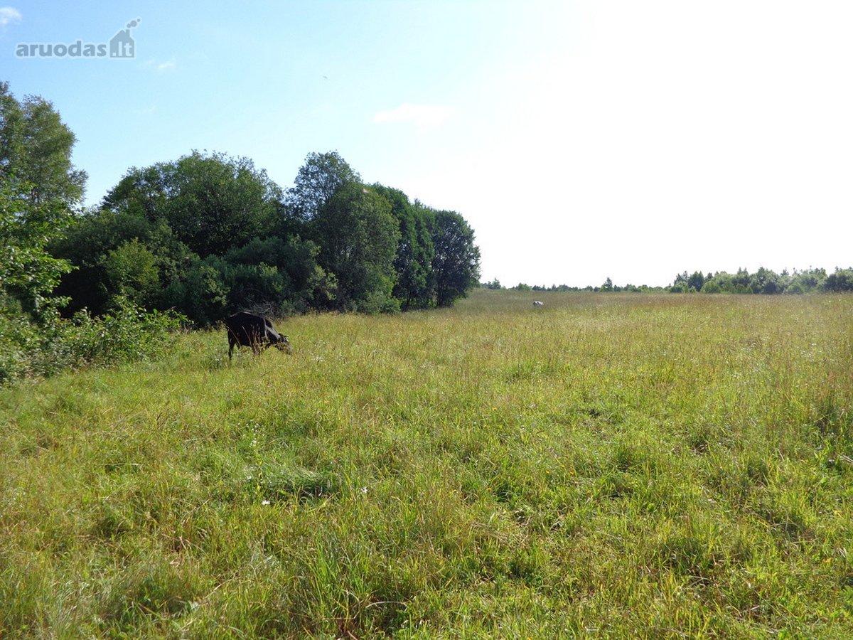 Vilniaus r. sav., Vėlybniškių k., žemės ūkio paskirties sklypas