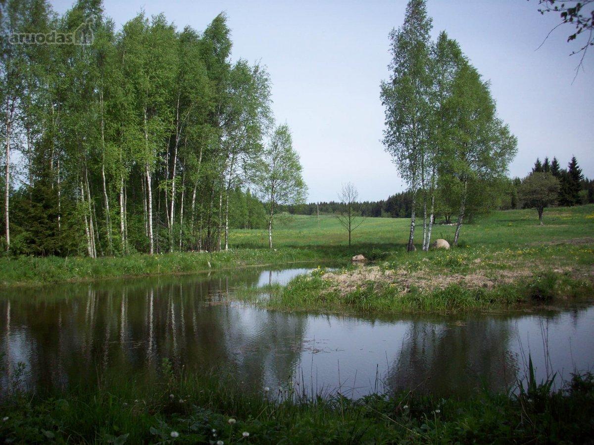 Plungės r. sav., Stirbaičių k., Tyrės g., namų valdos, žemės ūkio, miškų ūkio paskirties sklypas
