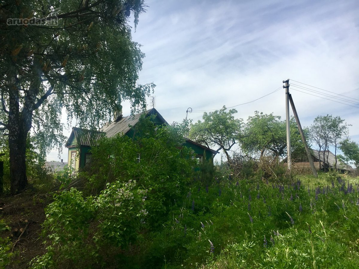Elektrėnų sav., Baltamiškio k., wooden farmstead