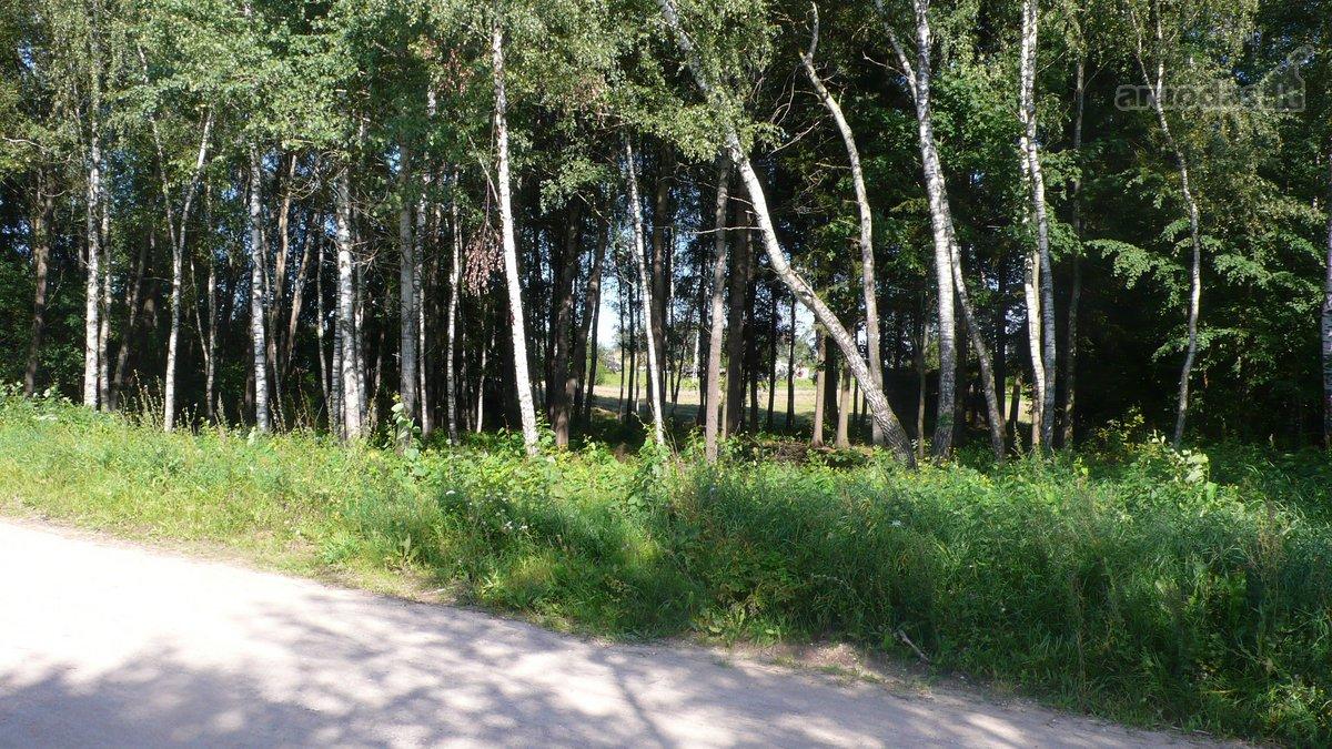 Vilniaus r. sav., Kasmiškių k., žemės ūkio paskirties sklypas