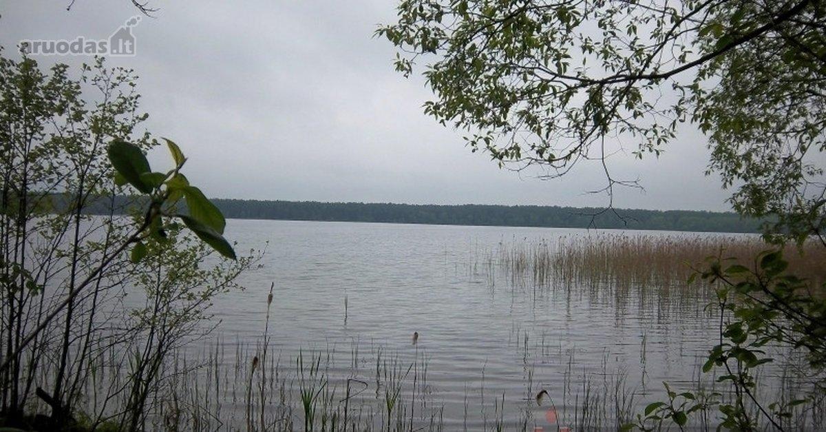 Varėnos r. sav., Žiūrų k., miškų ūkio paskirties sklypas