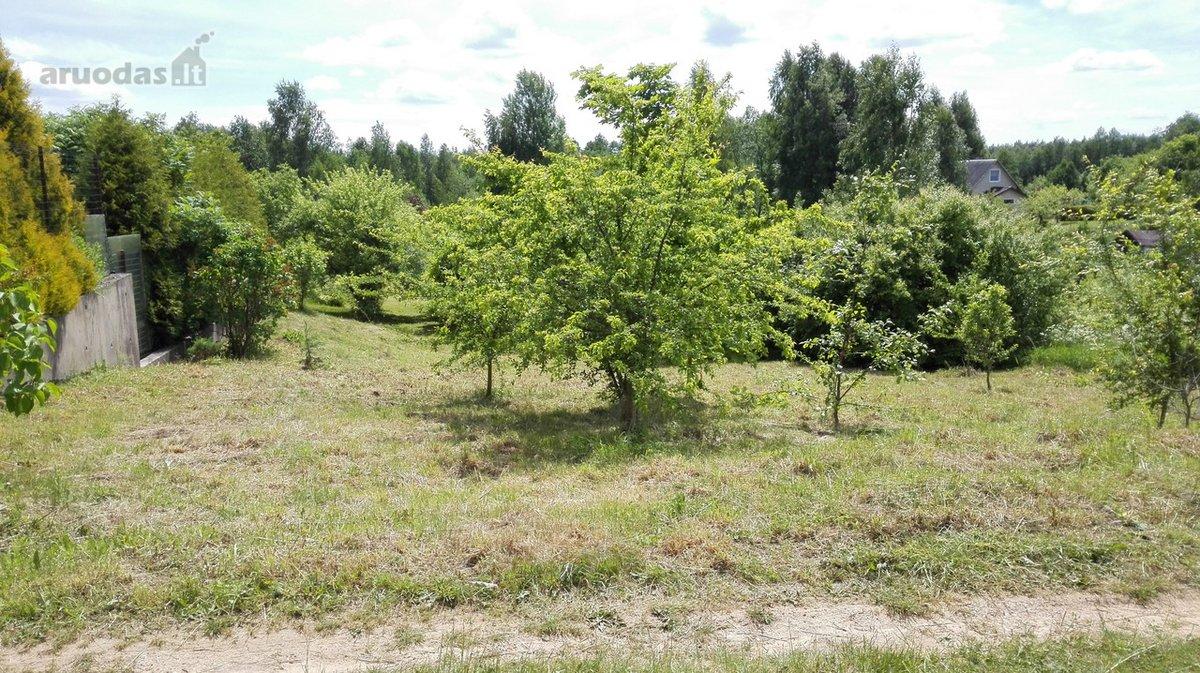 Vilniaus r. sav., Sudervės k., kolektyvinis sodas sklypas