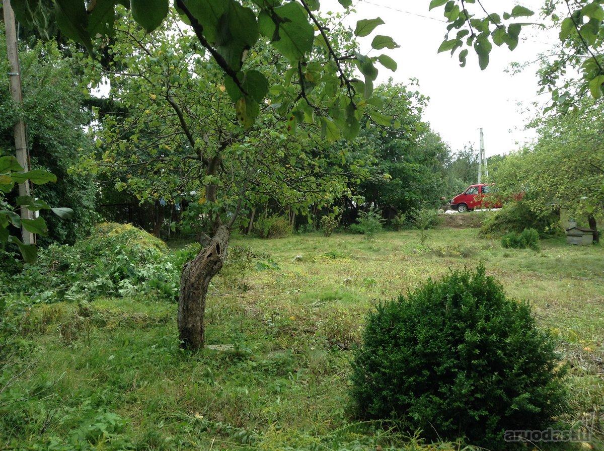 Vilnius, Antakalnis, Pragiedrulių g., kolektyvinis sodas sklypas