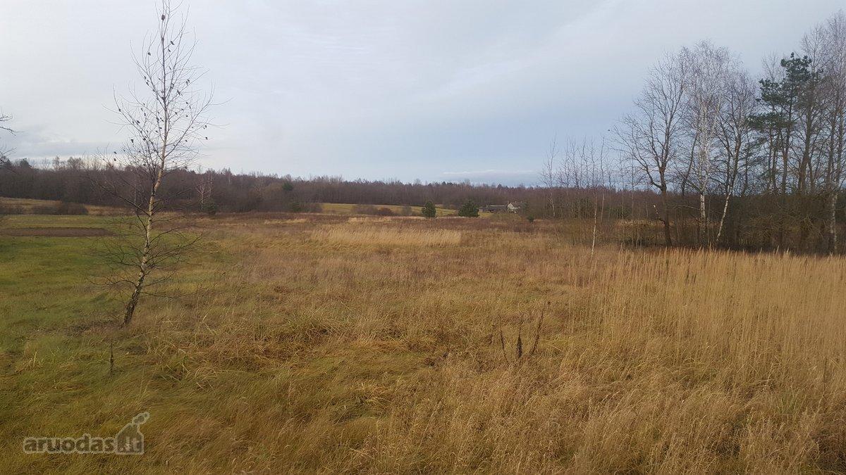 Vilniaus r. sav., Minkelių k., žemės ūkio paskirties sklypas