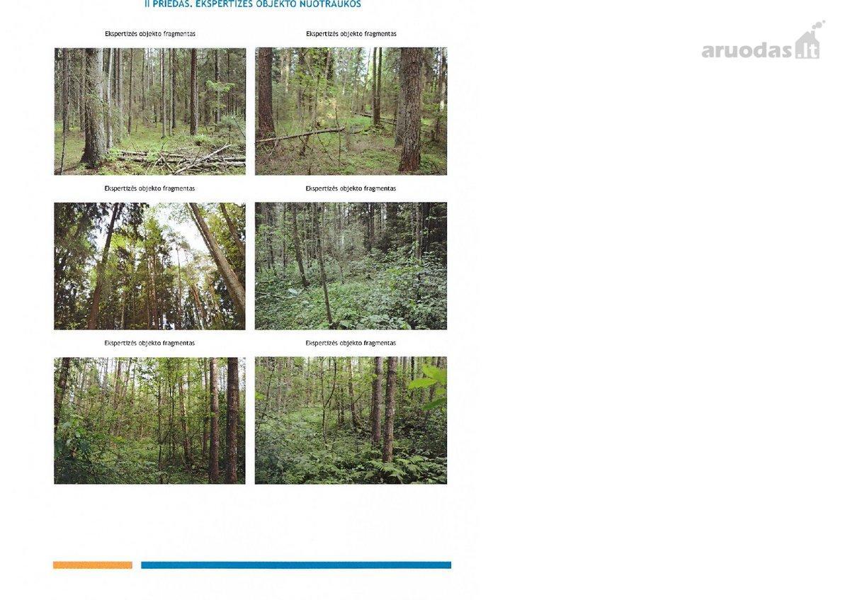 Šakių r. sav., Karčrūdės k., miškų ūkio paskirties sklypas