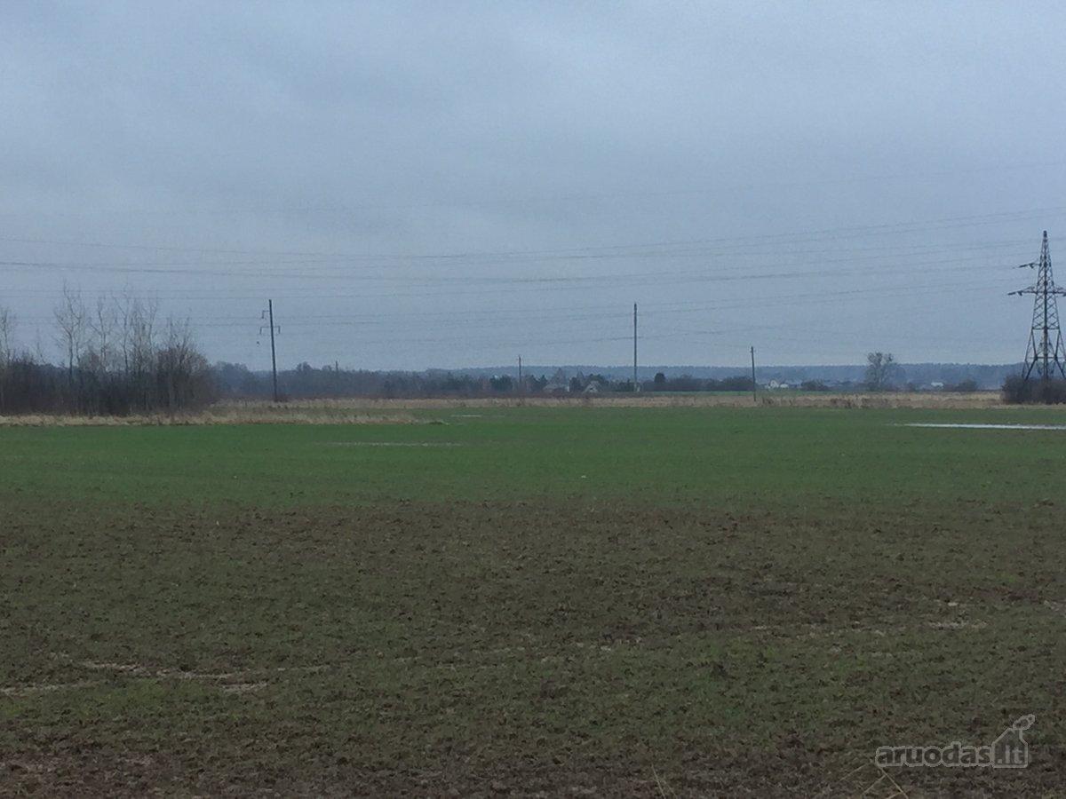 Kaunas, Rokai, Rokelių g., namų valdos paskirties sklypas