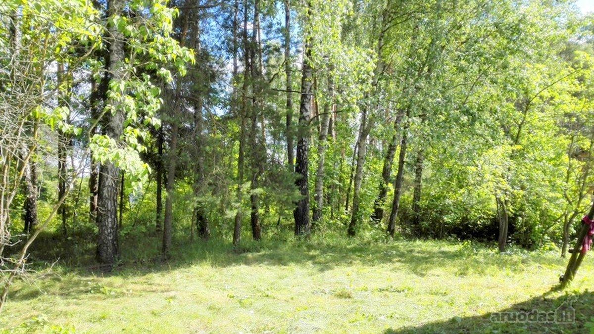 Vilnius, Balsiai, Pagubės g., kolektyvinis sodas sklypas