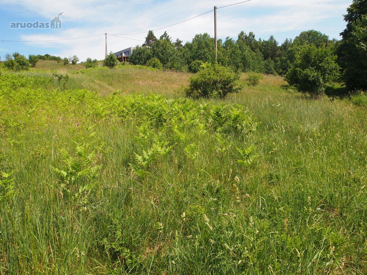 Trakų r. sav., Kariotiškių k., Grigiškių g., agricultural purpose vacant land
