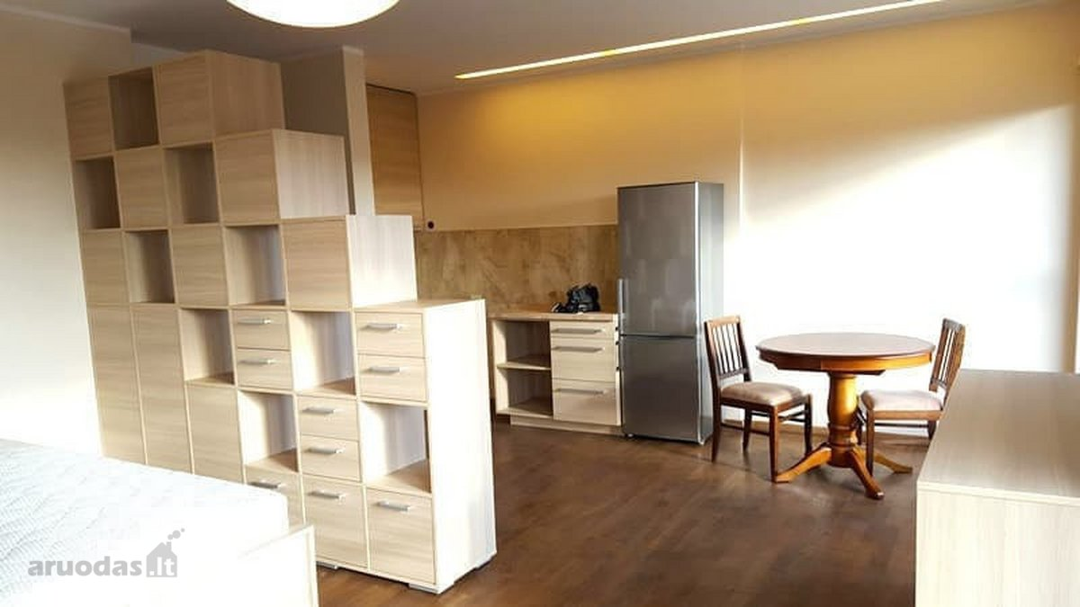 Vilnius, Bajorai, Mokslininkų g., 1 kambario butas