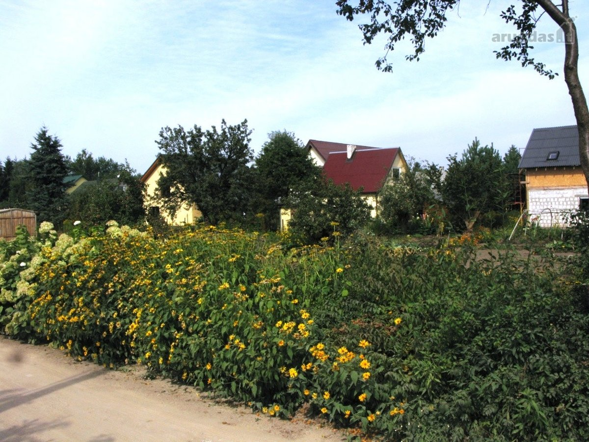 Vilnius, Balsiai, Visalaukio g., kolektyvinis sodas sklypas