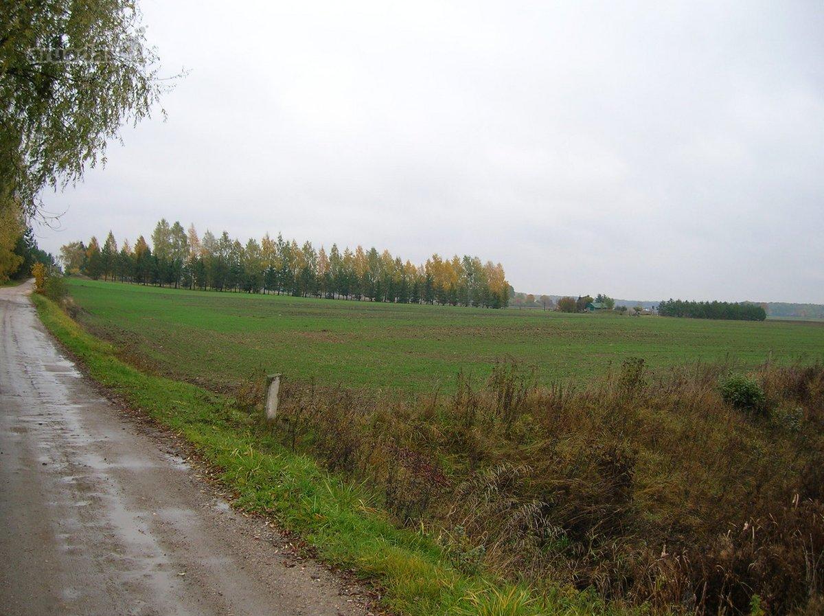 Kauno r. sav., Padainupio k., namų valdos paskirties sklypas