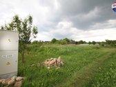 Parduodamas sodo sklypas Trakų Vokėje Galvės