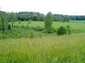 Vilniaus raj., Riešės sen., Palaukinės kaime,