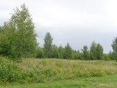 Vilniaus m., Pavilnėje, Kuodiškių g.,