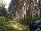Parduodu miško paskirties sklypą ,buvusi