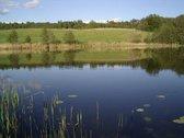Netoli Sadūnų parduodanas privatus 5ha ežeras