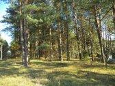 Vilniaus raj., Nemenčinėje, šalia Neries