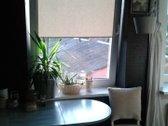 Parduodamas jaukus 2 kambarių butas Tulpių g.