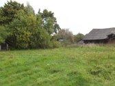 Parduodamas 8 ha sklypas,nuo Pėžaičių 1,7 km.