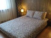 Išnuomojamas 2 kambarių 34 kv. m. butas