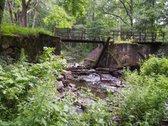 Miško sklypas yra Sartų regioniniame parke,