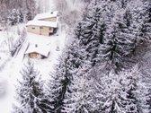 Erdvus namas išskirtinėje vietovėje - miško