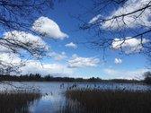 Ežero Pakrante Net 270 M. Trakai
