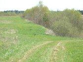 Kelyje tarp Molėtų ir Ukmergės, 78 km nuo