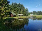 Parduodama oazė vidury miškų, sodyba Kauno
