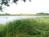 Sklypas Su Ežero Verdūno Pakrante.