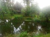 Parduodamas sodo namas su žemės sklypu. Name