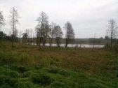 Parduodamas 1.4 ha sklypas su 80 m. ežero