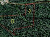 Parduodamas 2 miškų ūkio paskirties sklypai.