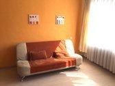 Išnuomojamas tvarkingas vieno kambario butas