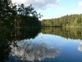 Parduodamas nuostabus 8,9 ha sklypas prie Kuojinio ežero Degučiuose, Zarasų raj.  Adresas: Degučiai, Zarasų raj. . Plotas: 890 arų. Paskirtis: ...