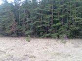 Traku rajone, Nikroniu kaime gamtos apsupyje
