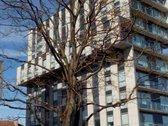 TIK ILGALAIKEI NUOMAI. Išnuomojamas naujai įrengtas, šviesus ir jaukus butas 2011 metų statybos  Pro langus atsiveria puiki miest...