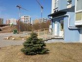 Statybos pabaiga planuojama rugsėjo mėn.