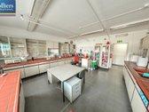 Parduodamas 6.196 m² pagal tarptautinius - nuotraukos Nr. 7