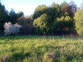 Sklypas gražioje vietoje, 13 km iki Vilniaus