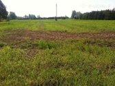 Parduodama 3,5 ha žemės ūkio paskirties žemė