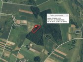 Parduodamas miškas 1,26ha šalia Bazilionių