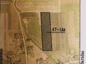 Parduodamas žemės ūkio paskirties, 2.1365 ha
