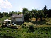 Parduodamas išskirtinis sodas Lentvaryje.